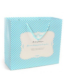 HO3106C - Gift Bag Strip Fashion 14.5 * 7 * 15.5 Cm
